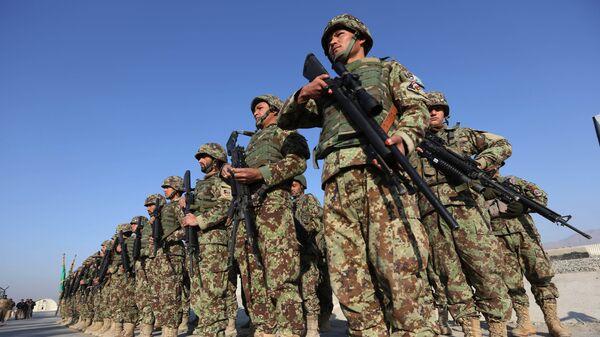 Forze di sicurezza afghane. Afghanistan,  11 gennaio 2015 - Sputnik Italia
