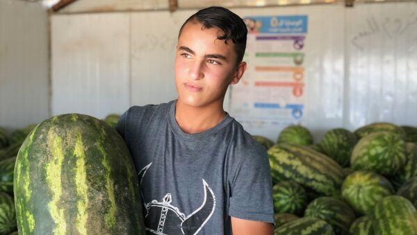 Юный продавец арбузов в крупнейшем на севере Иордании лагере для беженцев Заатари - Sputnik Italia