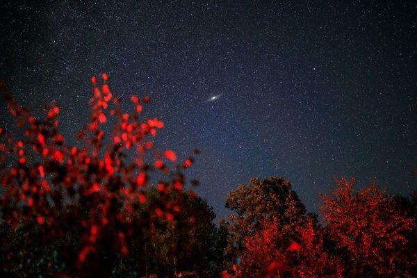 Cielo stellato durante la pioggia di meteoriti delle Perseidi - Sputnik Italia