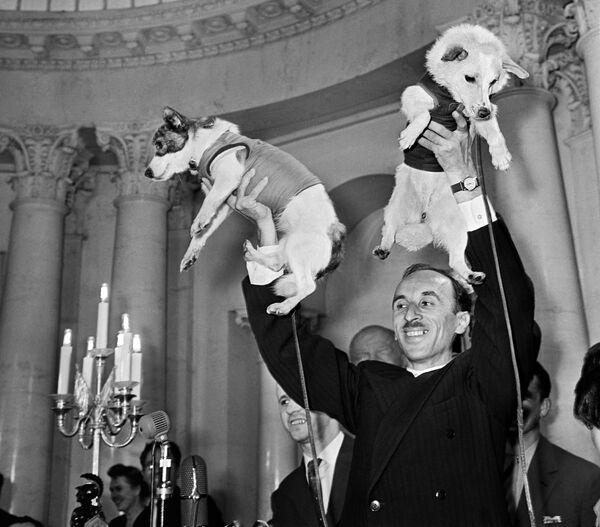 L'accademico Oleg Gazenko e i cani cosmonauti Belka e Strelka alla conferenza stampa dedicata al volo della navicella satellite con a bordo gli animali. - Sputnik Italia