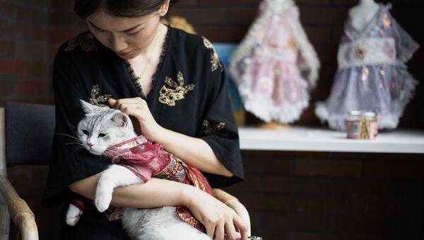 Китаянка Wu Qiuqiao с своей наряженной кошкой Liu Li в провинции Хунань - Sputnik Italia