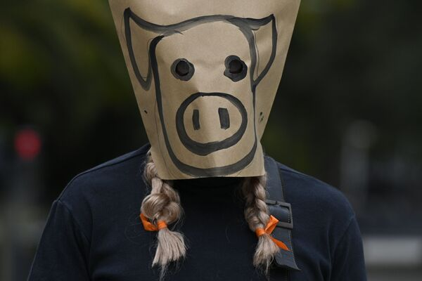 Un uomo che indossa una maschera cartacea con la faccia di un maiale disegnata sopra, prende parte ad una protesta contro l'accordo tra Argentina e Cina per produrre maiale per l'esportazione, in Plaza de Mayo a Buenos Aires il 25 agosto 2020 - Sputnik Italia