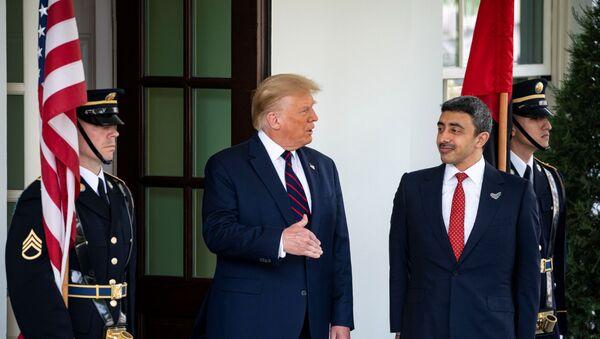 Donald Trump e Abdullah bin Zayed Al Nahyan - Sputnik Italia