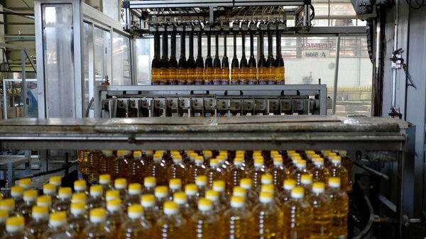 Produzione di olio vegetale in Russia - Sputnik Italia