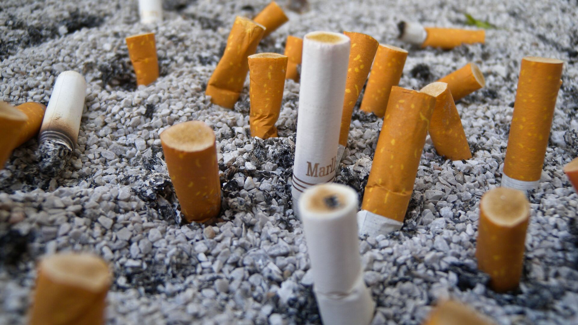 Sigarette - Sputnik Italia, 1920, 10.10.2021