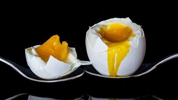 Un œuf - Sputnik Italia