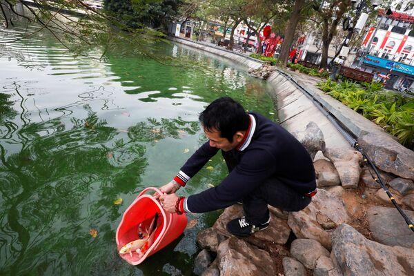 Un residente di Hanoi libera le carpe nell'ambito dei festeggiamenti del Capodanno Lunare in Vietnam.  - Sputnik Italia