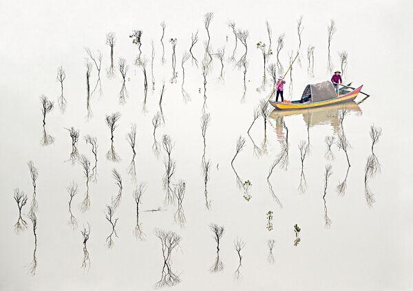 La foto Pescatori delle mangrovie del fotografo australiano Les Sharp, che è stata la vincitrice nella categoria Fine Art tra i fotografi professionisti del concorso fotografico Tokyo International Foto Awards 2020.  - Sputnik Italia