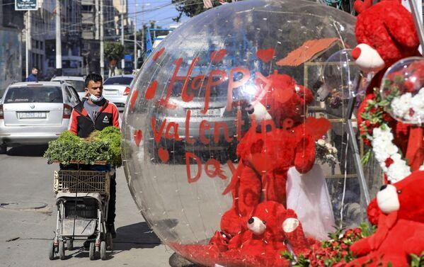 Decorazioni in onore di San Valentino a Gaza - Sputnik Italia