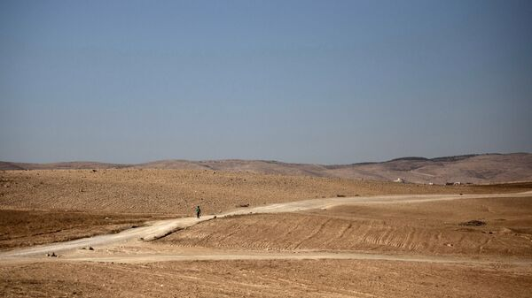 Israele deserto Negev - Sputnik Italia