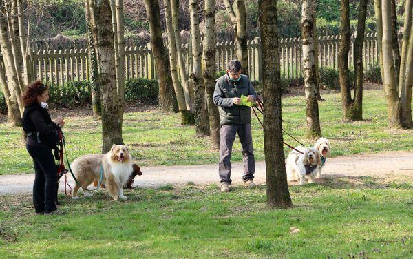 Le persone camminano con i cani in un parco - Sputnik Italia