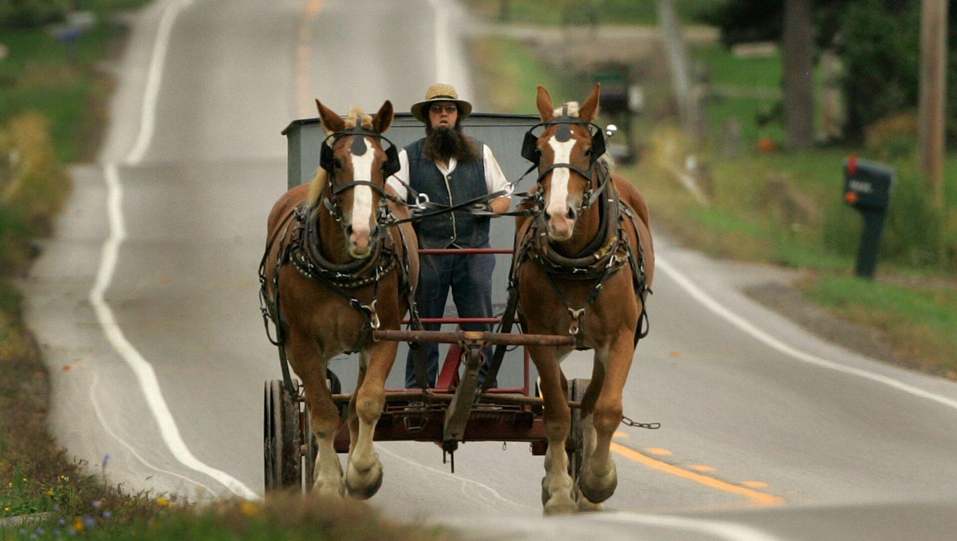 Gli Amish della Pennsylvania  - Sputnik Italia, 1920, 29.03.2021