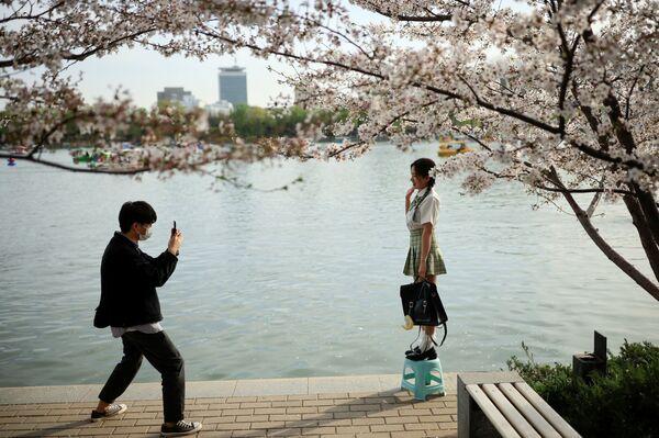 Le persone scattano una foto accanto a un albero in fiore durante la stagione della fioritura dei ciliegi nel Parco Yuyuantan a Pechino, Cina, il 31 marzo 2021 - Sputnik Italia