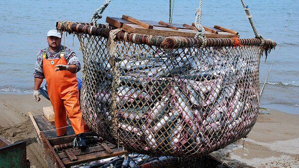 Pescatore al lavoro - Sputnik Italia
