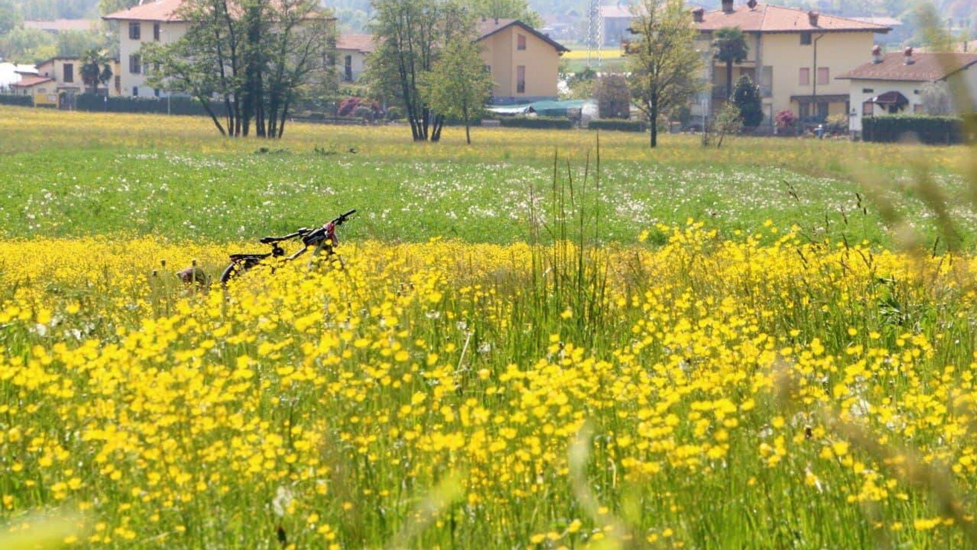 Fiori e  bicicletta in villaggio, Italia - Sputnik Italia, 1920, 29.05.2021
