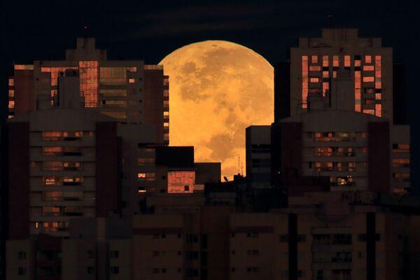 Un'eclissi lunare totale a Brasilia, in Brasile, mercoledì 26 maggio 2021. - Sputnik Italia