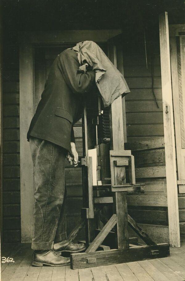 La prima macchina fotografica usata per fotografare gli insetti, USA. - Sputnik Italia