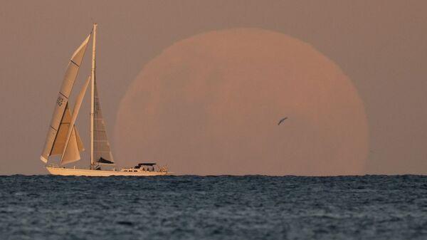 Яхта во время восхода луны в Сиднее  - Sputnik Italia
