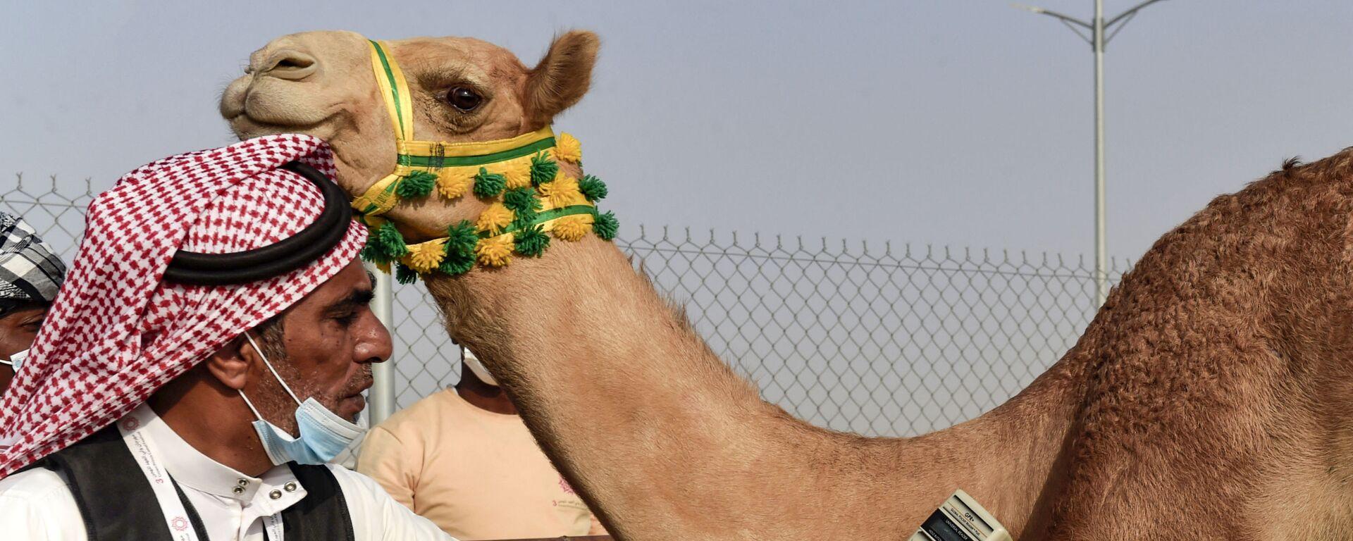 Проверка микрочипа верблюдов во время соревнования в саудовском городе Таиф - Sputnik Italia, 1920, 12.08.2021