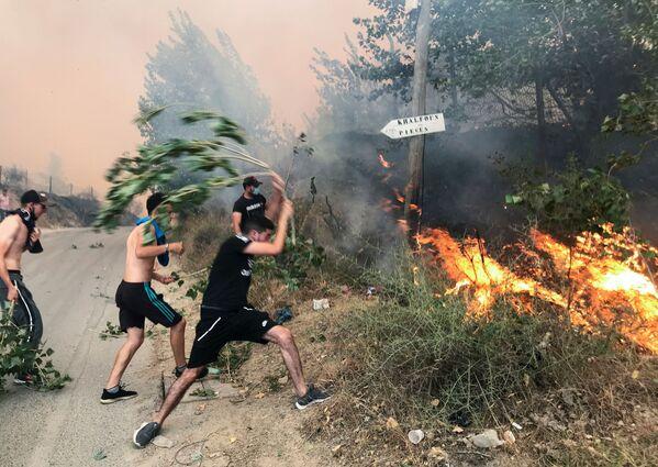 Alcune persone cercano di domare un incendio nella provincia montuosa di Tizi Ouzou, a est di Algeri, in Algeria, il 10 agosto 2021. - Sputnik Italia