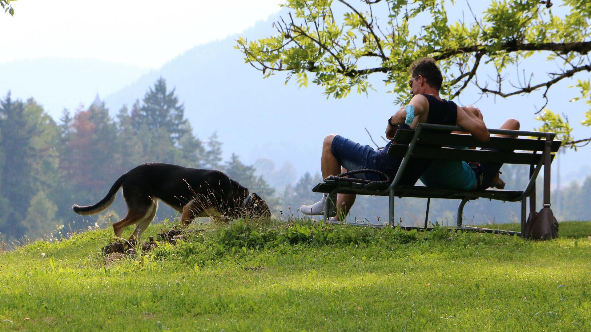 Un cane con un padrone fanno un giro in un parco in Italia - Sputnik Italia, 1920, 04.09.2021