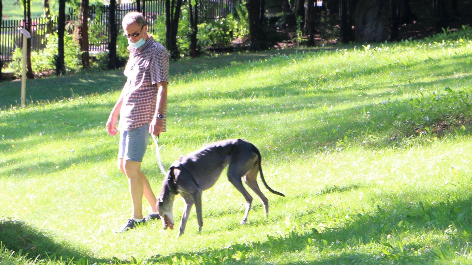 Un cane con un padrone fanno un giro in un parco in Italia - Sputnik Italia, 1920, 05.09.2021