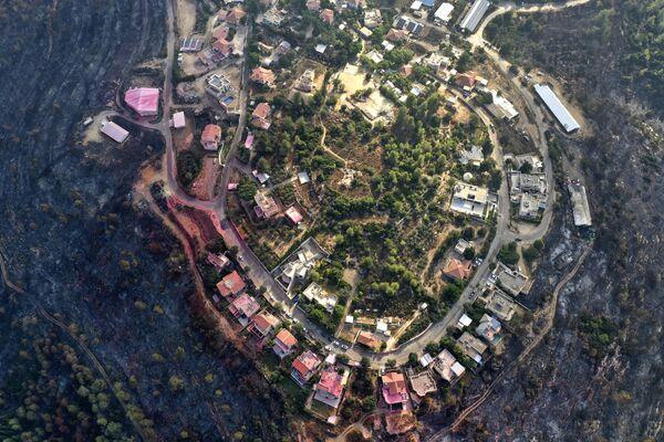 La foto scattata il 18 agosto 2021 mostra le foreste bruciate intorno al moshav Givat Yearim nelle montagne a circa otto chilometri a ovest di Gerusalemme dopo che gli incendi che hanno devastato i boschi sono stati finalmente messi sotto controllo.  - Sputnik Italia