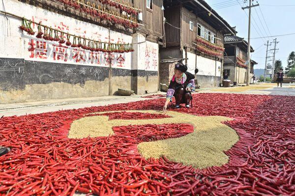 Un agricoltore crea una bandiera del Partito Comunista Cinese con mais e peperoni rossi, mentre altri agricoltori asciugano i loro prodotti raccolti a Congjiang, nella provincia sudoccidentale cinese di Guizhou. - Sputnik Italia