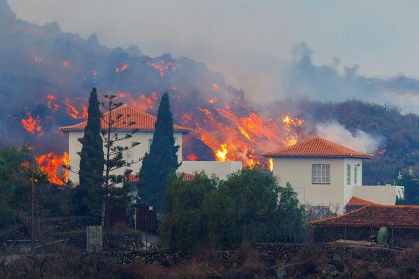 Secondo l'Istituto Vulcanologico delle Canarie, le colate di magma hanno raggiunto una temperatura di più di mille gradi centigradi e stanno avanzando a una velocità media di 700 metri all'ora. - Sputnik Italia