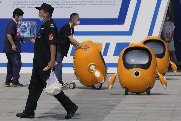 Questi simpatici robot, che in parte ricordano Pikachu, potrebbero diventare gli indispensabili assistenti dell'uomo nel prossimo futuro. - Sputnik Italia