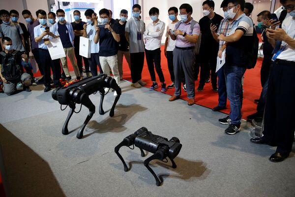 Per quelli che hanno sempre sognato di avere un amico a quattro zampe, l'azienda Unitree ha presentato una nuova generazione di cani robot. Il cyberdog può sollevare pesi ed è altamente produttivo. - Sputnik Italia