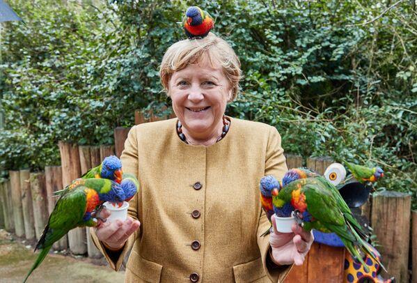 Il tour di addio della cancelliera tedesca Angela Merkel nel suo collegio elettorale in Pomerania: selfie con i passanti e fuoriprogramma con visita al parco ornitologico, il 23 settembre 2021. - Sputnik Italia