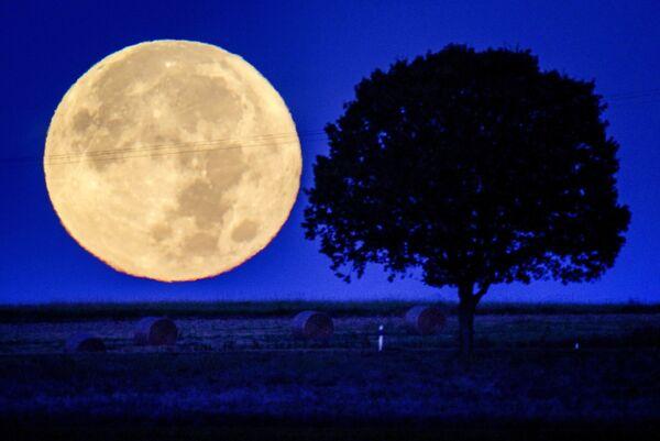 La luna piena nella regione del Taunus vicino a Wehrheim, in Germania, martedì 21 settembre 2021. - Sputnik Italia