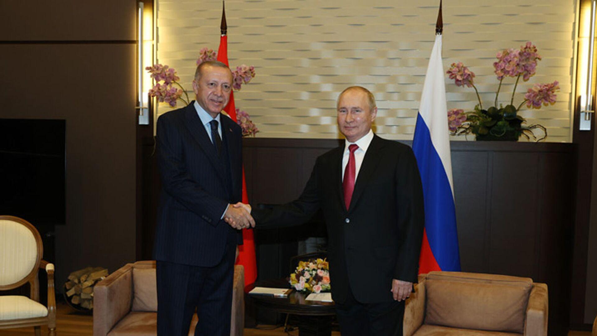Incontro di Putin e Erdogan a Sochi - Sputnik Italia, 1920, 29.09.2021