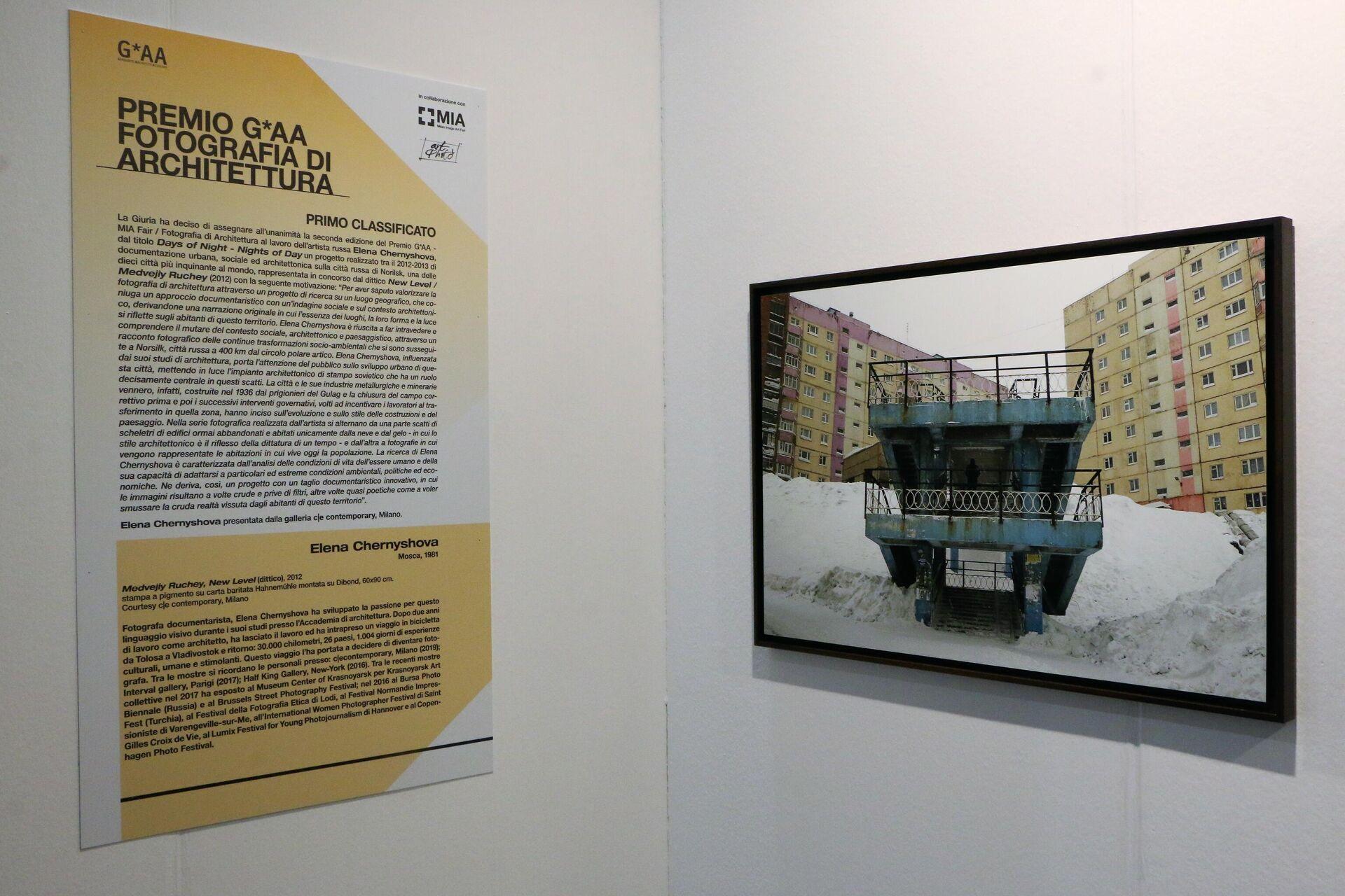 MIA Fair 2021, l'opera di Elena Chernyshova - Sputnik Italia, 1920, 09.10.2021