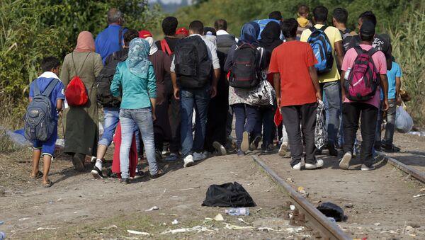 Migranti attraversano il confine con Ungheria dalla Serbia - Sputnik Italia