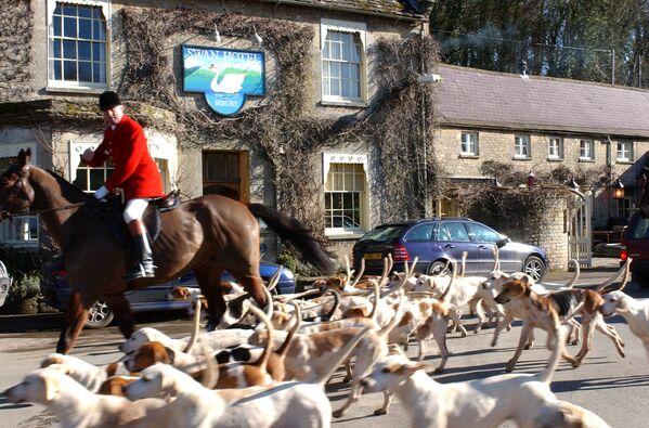 Un cacciatore con cani a Bibury, un villaggio nella contea inglese del Gloucestershire. - Sputnik Italia