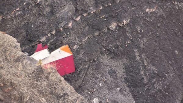 Rottami Airbus A320 della Germanwings - Sputnik Italia