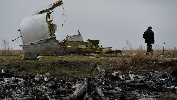 Rottami Boeing Malaysia Airlines caduto nel Donbass, Ucraina - Sputnik Italia
