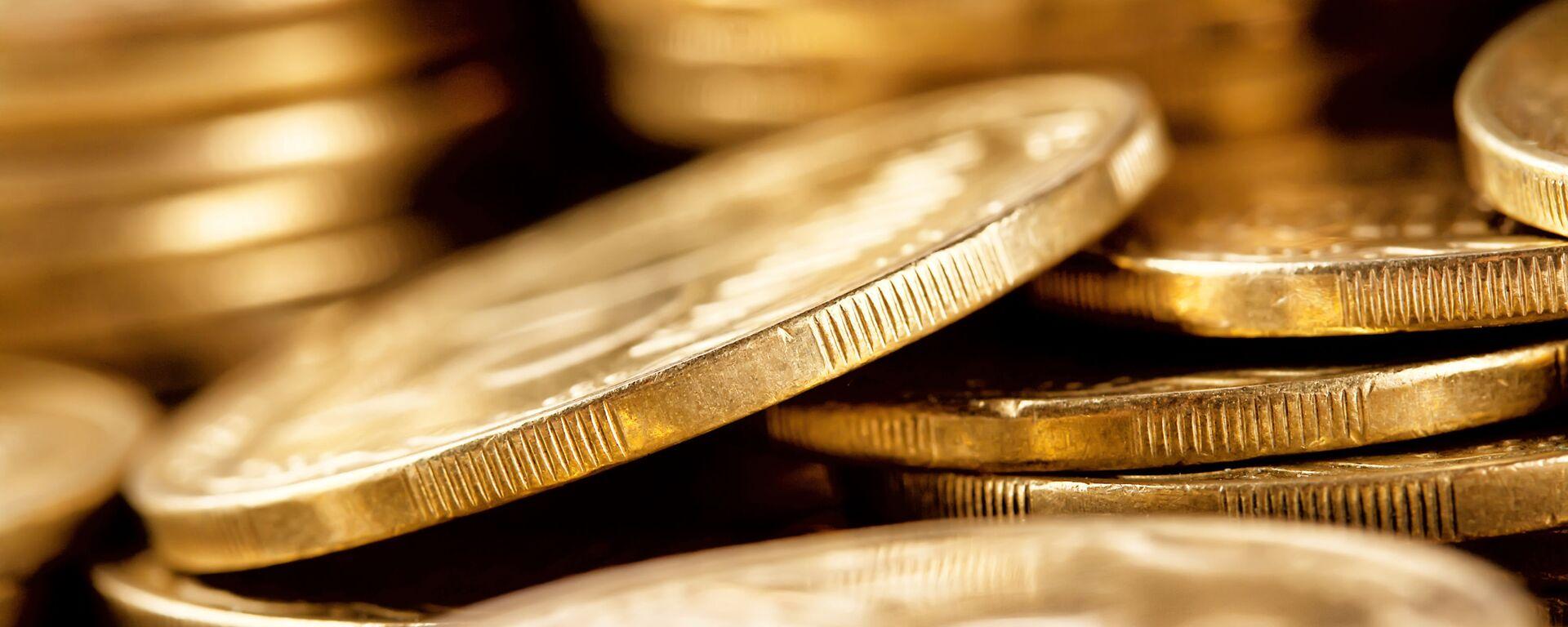Monete d'oro - Sputnik Italia, 1920, 12.11.2020
