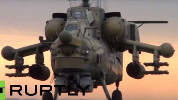 Il coccodrillo all'attacco - Sputnik Italia