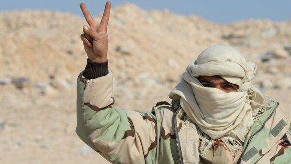 Miliziano filo-Assad a Palmira - Sputnik Italia