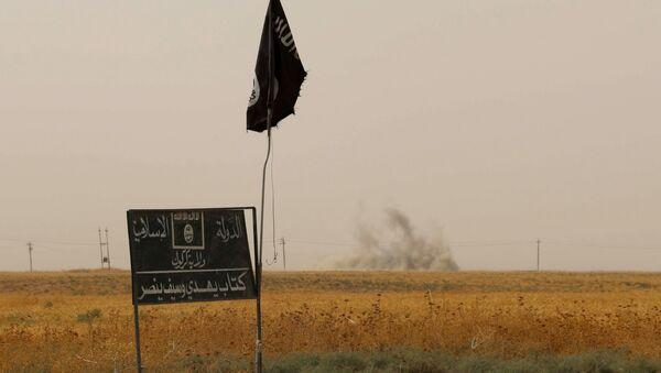 Bandiera e cartellone del Daesh - Sputnik Italia