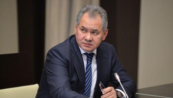 Ministro della Difesa russo Sergey Shoigu - Sputnik Italia