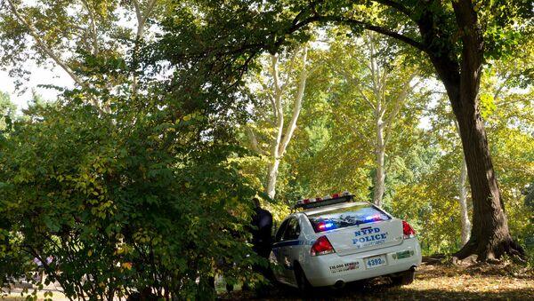 New York City - Central Park police car - Sputnik Italia