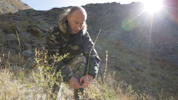 Il presidente Putin in tenuta militare. - Sputnik Italia