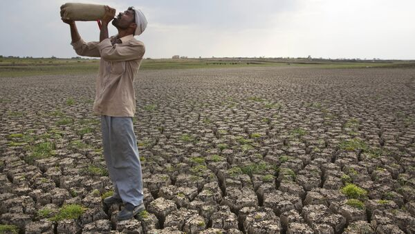Shepard drinks water on the dry bed of Manjara Dam, which supplies water to Latur and nearby villages in Marathwada region, in the Indian state of Maharashtra. (File) - Sputnik Italia
