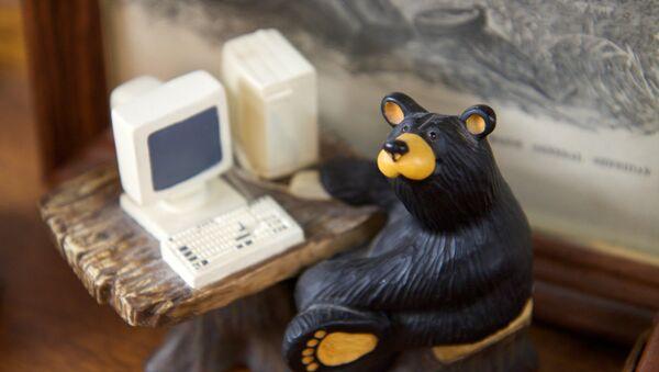 Russian hacker bear - Sputnik Italia