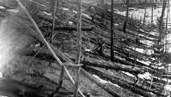 Trees lie strewn across the Siberian countryside 45 years after a meteorite struck the Earth near Tunguska, Russia. (File) - Sputnik Italia