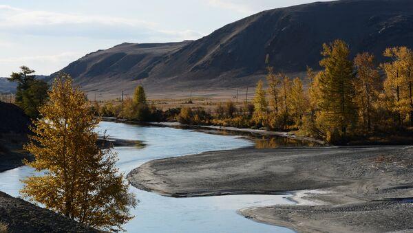 Un paesaggio dell'Altay, dov'è stata inventata una nuova varietà di mascarpone. - Sputnik Italia